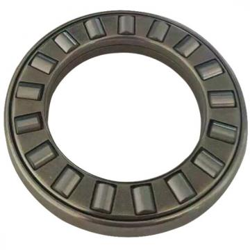 NJ336-E-M1A-C3 Cylindrical Roller Bearings