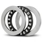 NU319-E-M1-C4-S1 Cylindrical Roller Bearings